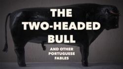 http://lealveileby.com/files/gimgs/th-80_2-Bull-Thumbnail.jpg