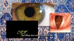 http://lealveileby.com/files/gimgs/th-80_Magic-for-Benjamin-Thumbnail.jpg
